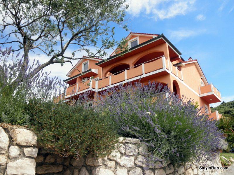 P6210758 800x600 - Apartments Matija